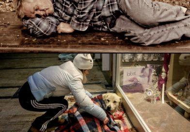 Помогнете на бездомните хора и животни в ледените дни
